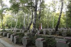 thumbs_DSC03427-Wojskowe-Powazki-zolnierskie-groby